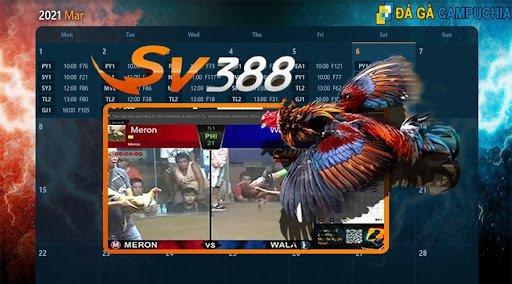 Nhà cái SV388 có uy tín hay không?