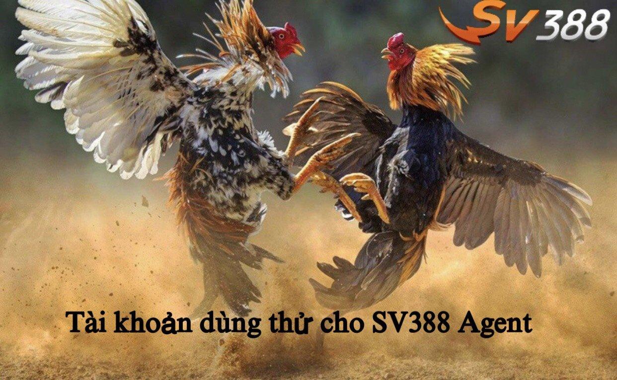 Tài khoản dùng thử cho Agent SV388