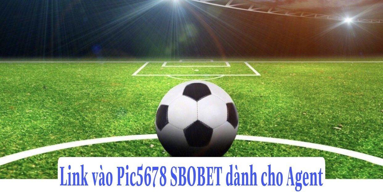 Link vào Pic5678 SBOBET dành cho Agent